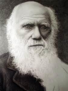 Charles Darwin, Naturalist